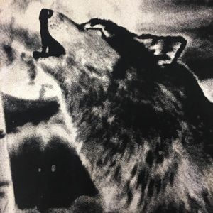 Heritage Shirts - HERITAGE AMERICA Wolf Graphic Tee (NWOT)